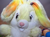 foto of peter cottontail  - the easter bunny - JPG