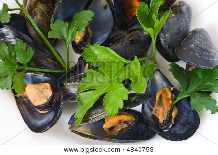 Mussels With Parsley