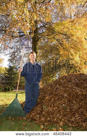 Raking Leaves Teen Boy Next To Leaf Pile