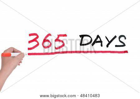 365 Days