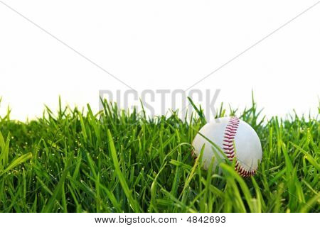 Baseball In Dewy Grass
