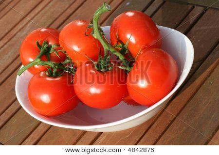 Organic Tomatoes Abstract
