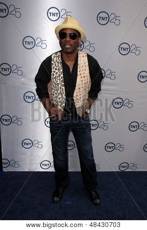 LOS ANGELES - JUL 24:  LeVar Burton arrives at TNT's 25th Anniversary Party at the Beverly Hilton Hotel on July 24, 2013 in Beverly Hills, CA
