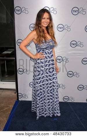 LOS ANGELES - JUL 24:  Moon Bloodgood arrives at TNT's 25th Anniversary Party at the Beverly Hilton Hotel on July 24, 2013 in Beverly Hills, CA