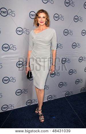 LOS ANGELES - JUL 24:  Brenda Strong arrives at TNT's 25th Anniversary Party at the Beverly Hilton Hotel on July 24, 2013 in Beverly Hills, CA