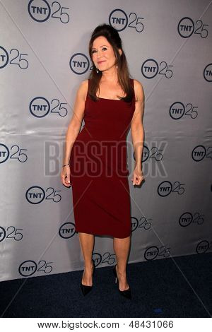 LOS ANGELES - JUL 24:  Mary McDonnell arrives at TNT's 25th Anniversary Party at the Beverly Hilton Hotel on July 24, 2013 in Beverly Hills, CA