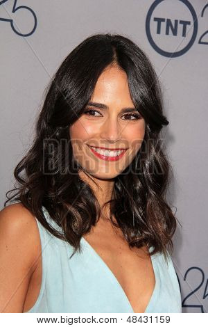 LOS ANGELES - JUL 24:  Jordana Brewster arrives at TNT's 25th Anniversary Party at the Beverly Hilton Hotel on July 24, 2013 in Beverly Hills, CA
