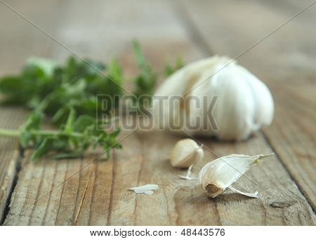 Garlic And Fresh Oregano.
