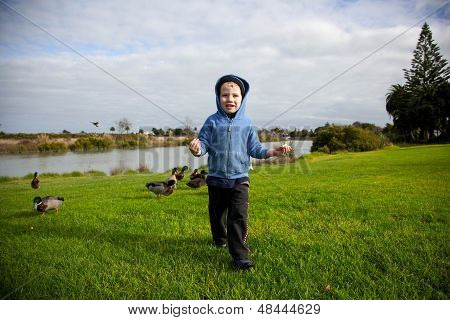 Boy Feeding Ducks.
