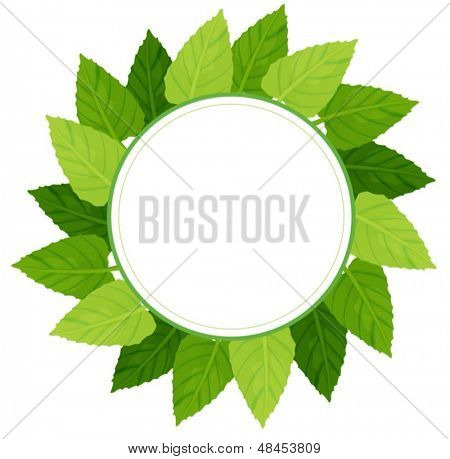 Illustration of a round green leafy border on a white background