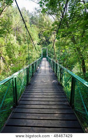 Suspended bridge inside Turda Gorges National Park