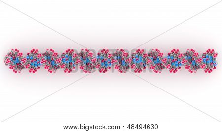 DNA Or Deoxyribonucleic Acid