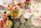image of orange blossom  - Watercolor painting mixed with flowers on textured paper - JPG