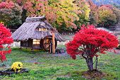 Huts and fall foliage in Kawaguchi, Japan.