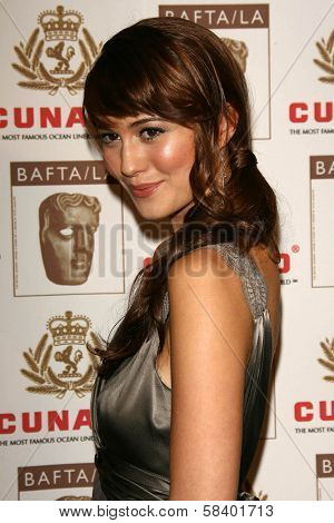 LOS ANGELES - NOVEMBER 2: Mary Elizabeth Winstead at the 2005 BAFTA/LA Cunard Britannia Awards at Hyatt Regency Century Plaza Hotel on November 2, 2006 in Century City, CA.