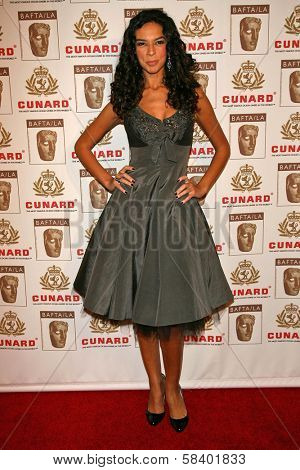 LOS ANGELES - NOVEMBER 2: Terri Seymour at the 2005 BAFTA/LA Cunard Britannia Awards at Hyatt Regency Century Plaza Hotel on November 2, 2006 in Century City, CA.