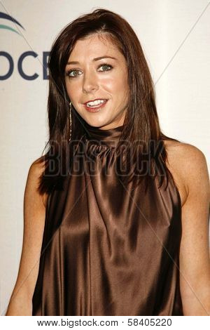 LOS ANGELES - NOVEMBER 09: Alyson Hannigan at the 2006 Partners Award Gala presented by Oceana at Esquire House November 09, 2006 in Los Angeles, CA.