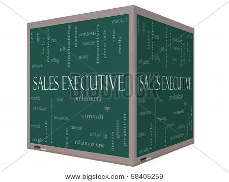 Sales Executive Word Cloud Concept On A 3D Cube Blackboard