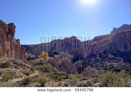 Upland Sonoran Natural Area