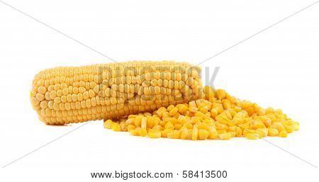 One corn cob and handful canned corns.