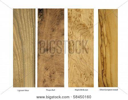 Lignum, Thuya-burl,Maple,Olive wood samples