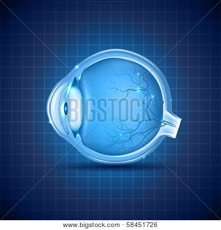 Human Eye Abstract Blue Design