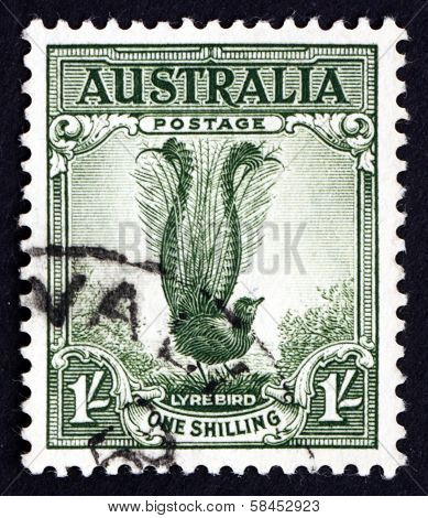 Postage Stamp Australia 1941 Male Superb Lyrebird, Songbird