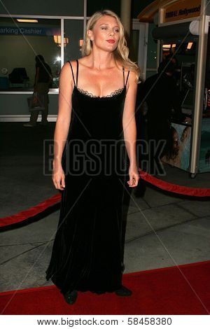 HOLLYWOOD - DECEMBER 13: Peta Wilson at the Los Angeles Premiere of