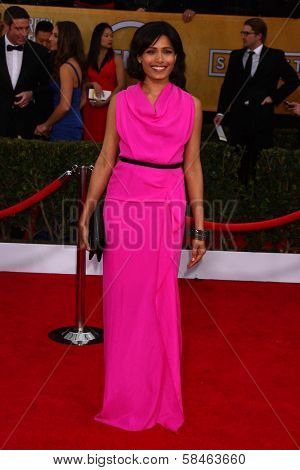 Freida Pinto at the 19th Annual Screen Actors Guild Awards Arrivals, Shrine Auditorium, Los Angeles, CA 01-27-13