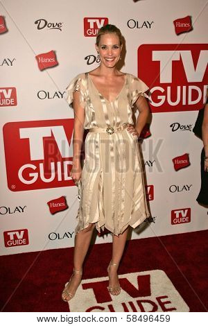 HOLLYWOOD - AUGUST 27: Leslie Bibb at the TV Guide Emmy After Party at Social August 27, 2006 in Hollywood, CA.