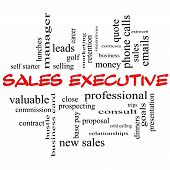 Sales Executive Word Cloud Concept In Red Caps
