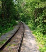stock photo of train track  - railroad track winding through green summer forest - JPG