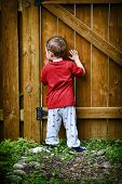stock photo of peep hole  - A small peeping toddler peers out of a hole in the fence at the world beyond his backyard - JPG