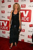 HOLLYWOOD - AUGUST 27: Jenna Elfman at the TV Guide Emmy After Party August 27, 2006 in Social, Holl