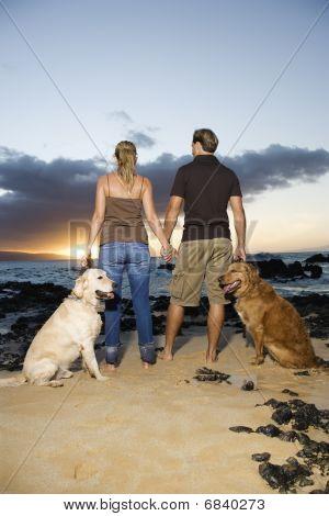 Pareja agarrados de la mano y caminar perros en la playa