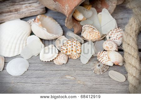 Marine background - seashells, rope and amphora