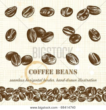 Big collection of coffee beans and horizontal seamless border, hand-drawn illustration.