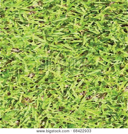 vector of the grass blade Field