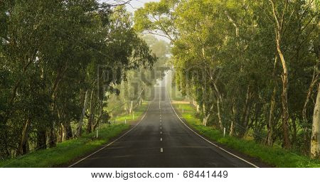 Road in the Adelaide Hills, South Australia