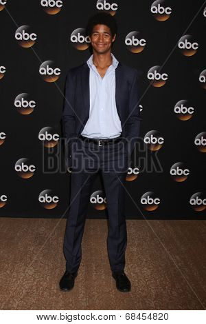 LOS ANGELES - JUL 15:  Alfred Enoch at the ABC July 2014 TCA at Beverly Hilton on July 15, 2014 in Beverly Hills, CA