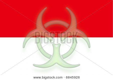 Flag Of Indonesia Health Warning