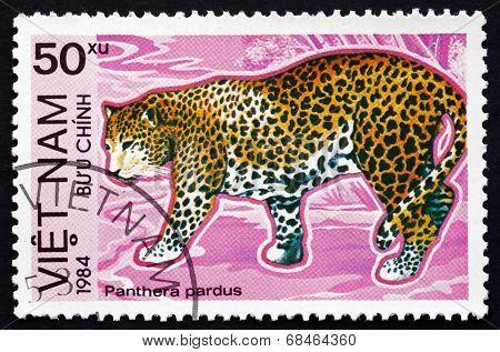Postage Stamp Vietnam 1984 Leopard, Big Cat