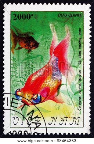 Postage Stamp Vietnam 1990 Rainbow Goldfish, Freshwater Fish