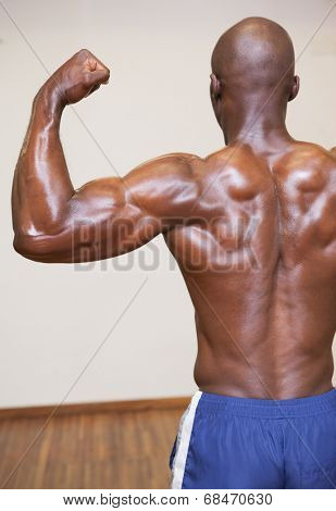 Rear view of shirtless young muscular man flexing muscles in gym