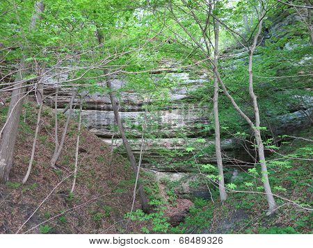 Wall of Canyon in Spring at Starved Rock State Park