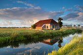 stock photo of farmhouse  - cozy farmhouse in gold sunset sunlight Netherlands - JPG