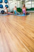 pic of cobra  - Yoga class in cobra pose in fitness studio at the leisure center - JPG