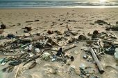 foto of polluted  - Beach pollution - JPG