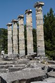 image of ionic  - Ionic columns of the Temple of Athena Polias in ancient Priene Turkey - JPG