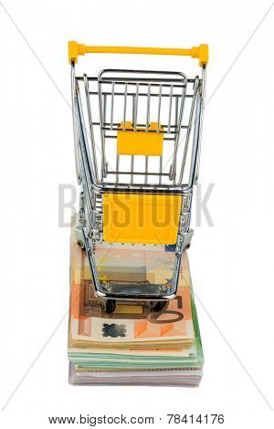 shopping cart stands on banknotes, symbolic photo for shopping, purchasing power, money printing and inflation